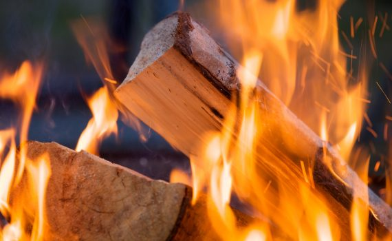 What Is The Best Type Of Wood To Burn All About Chimneys